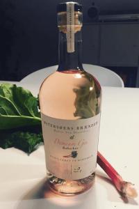Premium Rabarber Gin